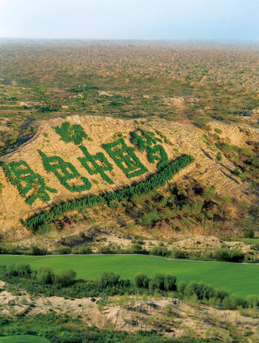 绿色中国梦 库布其30年治沙之路